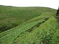 Bwlch Glynmynydd - geograph.org.uk - 471653.jpg