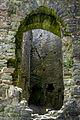 Caerphilly Castle (7961799738).jpg