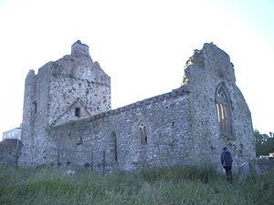 Iffa and Offa West - Cahir Abbey, 2007.