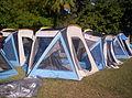 Campamento Lajas y Museo de Ponce 186.jpg