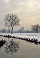 Campo in neve - Basiglio - panoramio.jpg