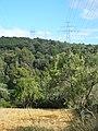 Camps de Can Carbonell de la Muntanya P1490177.jpg
