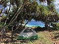 Campsite 17 at Kipahulu Campground, 2020 (afe3bc2f-908d-484b-999f-bbeeebfc7e51).jpg