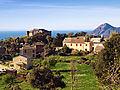 Canari-chateau.jpg