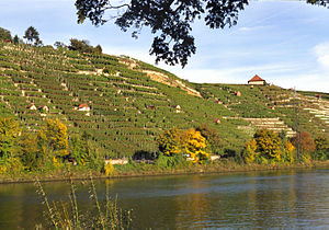 Württemberg (wine region) - The vineyard Cannstatter Zuckerle is one of Württemberg's most well-known. It is situated in Bad Cannstatt, part of Stuttgart, and its steep terraced vineyards overlook river Neckar.