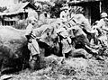 Captured Japanese Elephant Cavalry.jpg