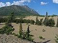 Carcross desert 2 (1189913080).jpg