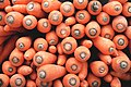 Carrots (Unsplash).jpg