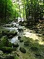 Cascades du Hérisson (6045604430).jpg