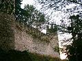 Castelo de Torres Novas (33).JPG