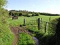 Cavankilgreen Townland - geograph.org.uk - 164462.jpg
