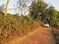 Chandraketugarh Mound - Berachampa 2012-02-24 2539.JPG