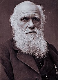 Charles Darwin photograph by Herbert Rose Barraud, 1881.jpg