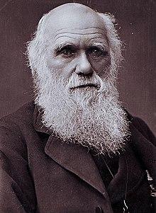 Ang pinaniniwalaang huling litrato ni Darwin noong 1881 bago ang