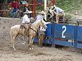 Charreada en El Sabinal, Salto de los Salado, Aguascalientes 38.JPG