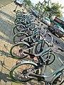 Chartered Bike Surat.jpg