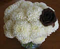 Chrysanthemums white.jpg