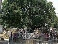 Chypre Paphos Catacombes Sainte Solomoni Ex Voto 20062014 - panoramio.jpg