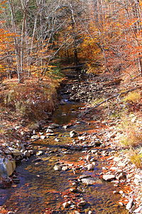 Cider Run looking upstream.JPG