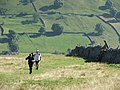 Climbing out of Wharfedale. - geograph.org.uk - 98521.jpg