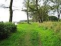 Coastal footpath - geograph.org.uk - 1563887.jpg