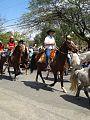 Cocheiras dos Barnabés - Cavalgadas pela cidade.jpg