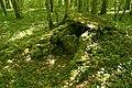 Cohons - Bois de la vergentière.jpg