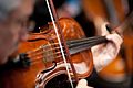 Companhia Brasileira de Ópera - violin.jpg