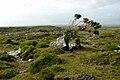Connemara (pixinn.net).jpg