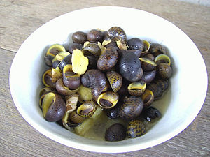 Neritidae - A dish of cooked nerites from the Rajang River, Sarawak, Malaysia