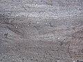 Cross-bedding in quartzite (Baraboo Quartzite, upper Paleoproterozoic, ~1.7 Ga; Tumbled Rocks Trail, Devil's Lake State Park, Wisconsin, USA) 13 (18199420334).jpg