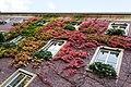 Dülmen, Rathaus -- 2012 -- 8698.jpg