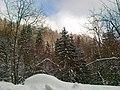 DN75 - panoramio (12).jpg