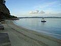 Dalupiri Island Resort 2012.jpg
