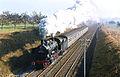 Dampflok auf Gäubahn-dvdb.jpg