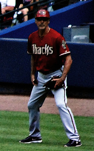 Dave McKay (baseball) - McKay with the Arizona Diamondbacks in 2014