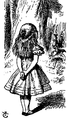 De Alice's Abenteuer im Wunderland Carroll pic 23 edited 2 of 2.png