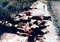 Dead from the My Lai massacre on road.jpg