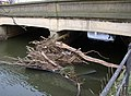 Debris at Baildon Bridge, Shipley - geograph.org.uk - 334378.jpg
