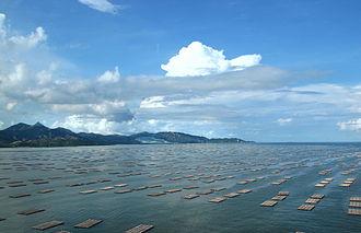 Deep Bay, China - Image: Deep Bay 2011