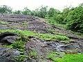 Deep Green Forest Sholayar - panoramio.jpg
