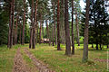 Dendropark stepanavan 4.jpg