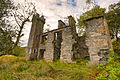 Derrycunihy Ruins, Ring of Kerry (12282525195).jpg