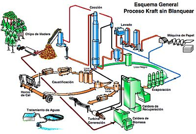 Diagrama Proceso Kraft.jpg