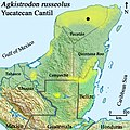 Distribution of the Yucatán Cantil, (Agkistrodon russeolus).jpg