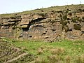 Disused Quarry, Pinfold - geograph.org.uk - 425398.jpg