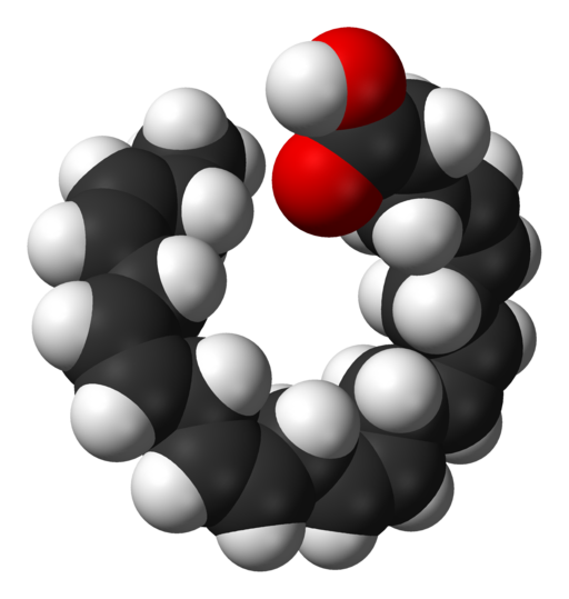 Docosahexaenoic-acid-3D-sf