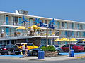 Doo Wop Blue Palms WW NJ.jpg