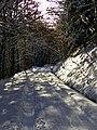 Down - panoramio (5).jpg