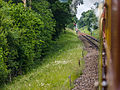 Down the line from Kingscote (9130965744).jpg